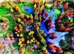 湖北一次性拿下十个国家湿地公园 哪个离你家最近 - 新浪湖北