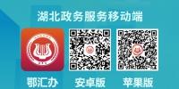 """湖北政务服务APP27日上线 诸多事项可以""""掌上办""""了 - 新闻出版广电局"""