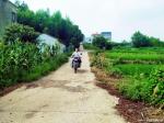 """博士镇长团:""""美丽乡村""""建设中的青春风景线 - 武汉大学"""