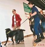 资料图:香港海关使用拉布拉多钞票搜查犬开展工作。图片来源:香港《文汇报》 记者 彭子文/摄 - Hb.Chinanews.Com
