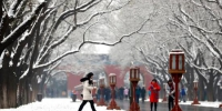 资料图:北方迎来降雪。中新社记者 富田 摄 - 新浪湖北