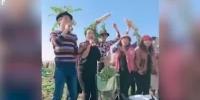 视频:谣言引千人拔光百万斤萝卜 农户欲哭无泪 - 新浪湖北